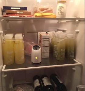 fridge purifier